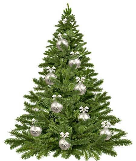 K Vianociam neodmysliteľne patrí aj výzdoba vianočného stromčeka