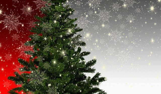 Uprednostňujete živý alebo umelý vianočný stromček?